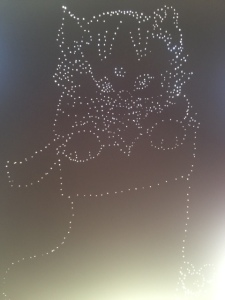 Pin art reverse after pinning -  Cat